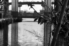 Waters Gowanus